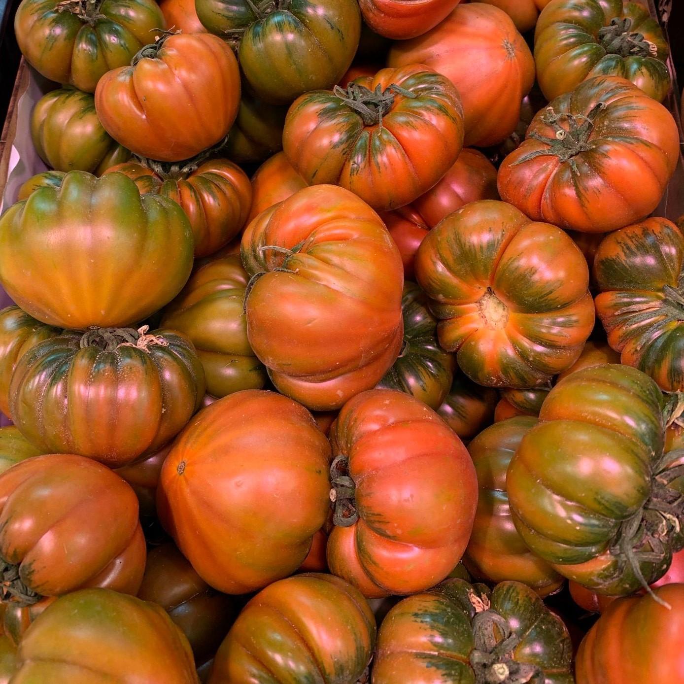 tomate raff 5 jotas